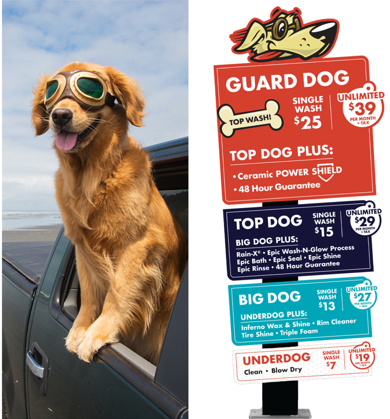TopDog_WorkPage_003_12 1
